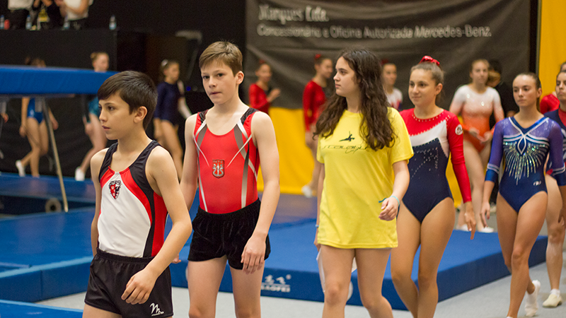 Gymnasts lining up